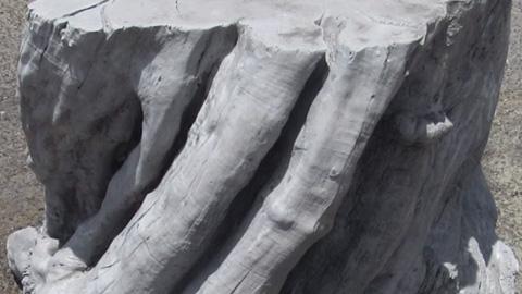 混凝土复制木纹细节